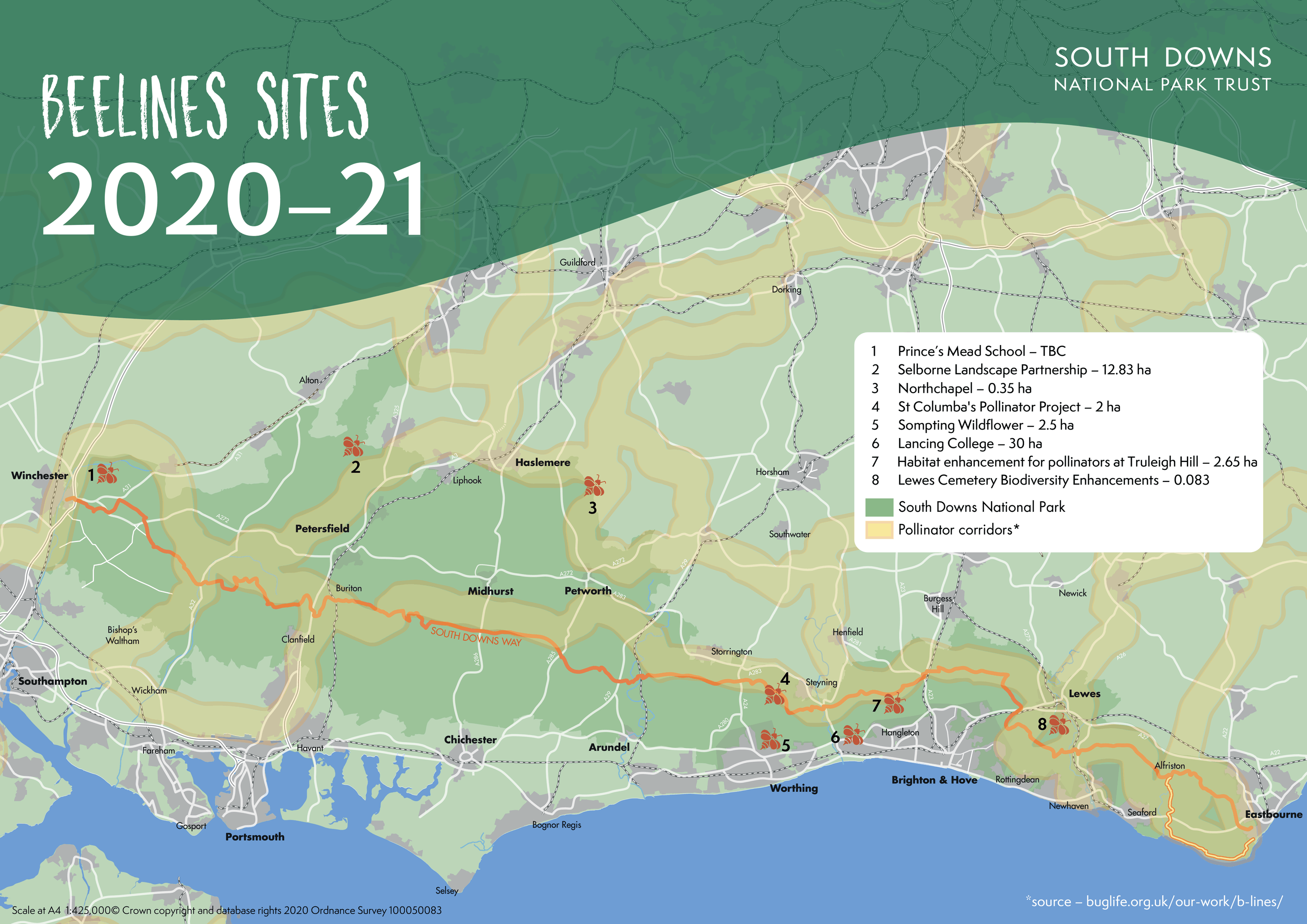Project map showing phase one of Beelines